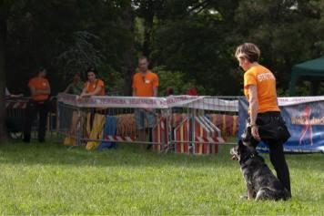 sport cinofili (5)