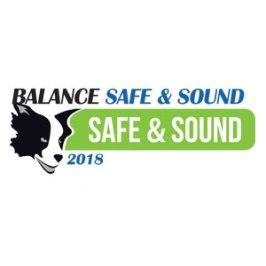 Balance Safe & Sound