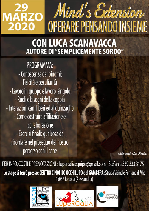 SCANNAVACCA_web